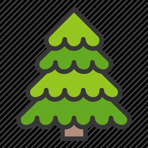 nature, pine, spring, tree icon