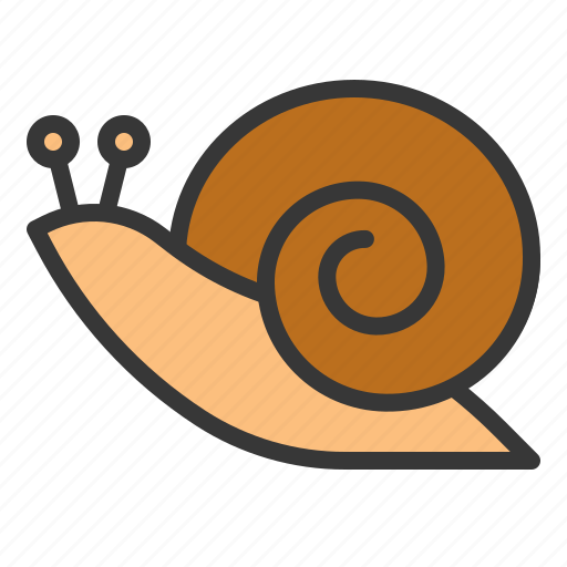 animal, nature, snail, spring icon
