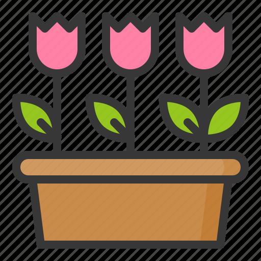flora, floral, flower, nature, spring, tulip icon