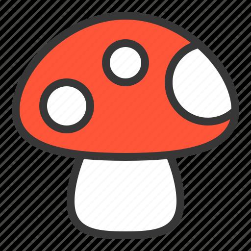 food, mushroom, nature, spring icon