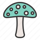 mushroom, nature, poison, spring icon