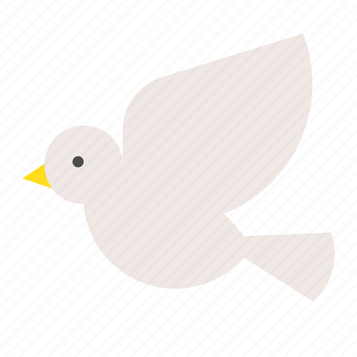 bird, fly, nature, poultry, spring icon