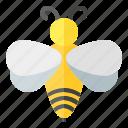bee, beekeeping, honey, insect, spring