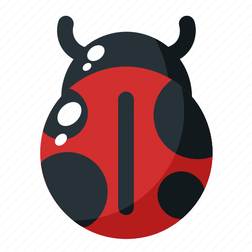 animal, bug, insect, pest, spring icon
