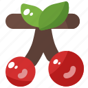 cherry, fresh, fruit, nature, spring icon