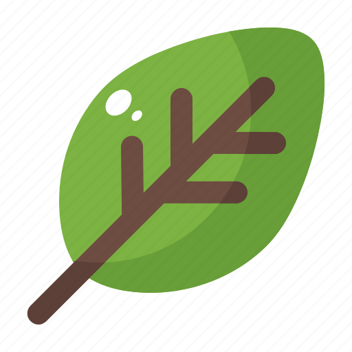 foliage, green, leaf, nature, plant, spring icon