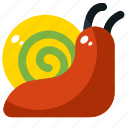 animal, nature, shell, slow, snail