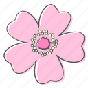 floral, flower, nature, ornament, plant, rose, wild