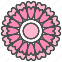 blossom, cosmos, daisy, flower, lavatera, nature, spring icon