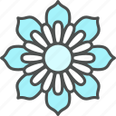 blossom, cosmos, daisy, flower, nature, spring icon