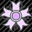 blossom, cosmos, dahlia, flower, nature, spring icon