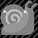 animal, nature, shell, slow, snail