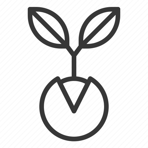 Spring, nature, tree, sprout icon