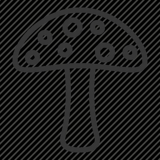 Spring, mushroom, poison, nature icon