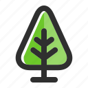 botany, eco, forest, nature, plant, spring, tree