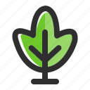 botany, eco, forest, nature, plant, spring, tree icon