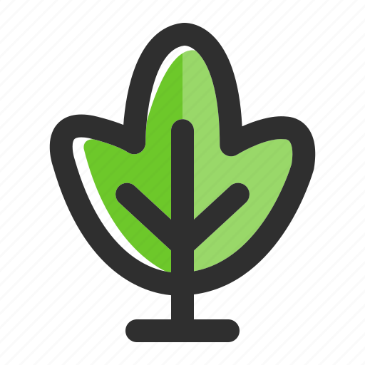 Botany, eco, forest, nature, plant, spring, tree icon - Download on Iconfinder