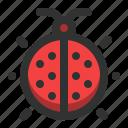 animal, bug, insect, ladybug, spring icon