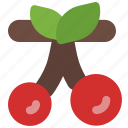 cherry, fresh, fruit, nature, spring icon