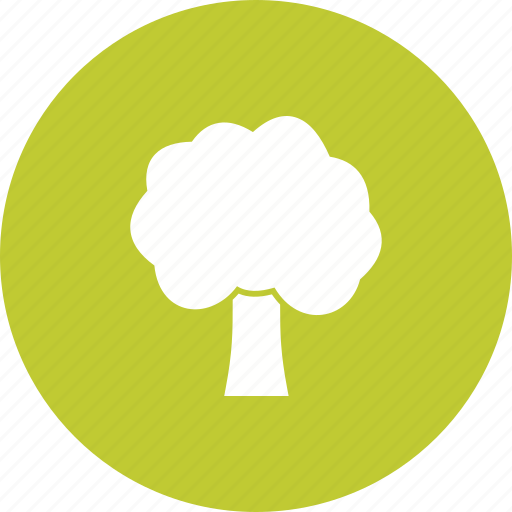 Branch, nature, plant, roots, spring, tree icon - Download on Iconfinder