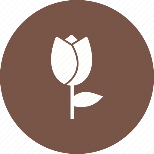 Plant, garden, nature, spring, pot, decoration, tulips icon