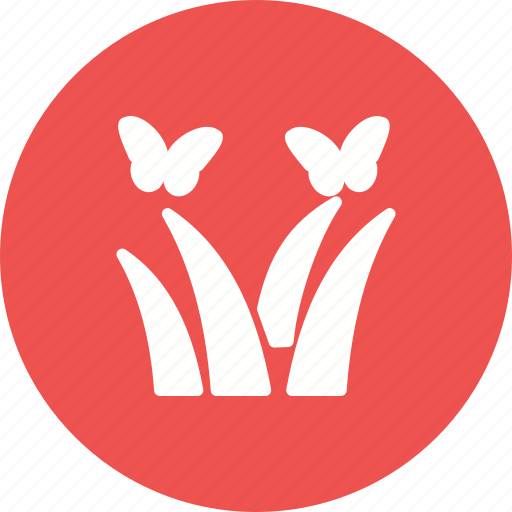 Beautiful, butterfly, flower, beauty, green, grass, red icon