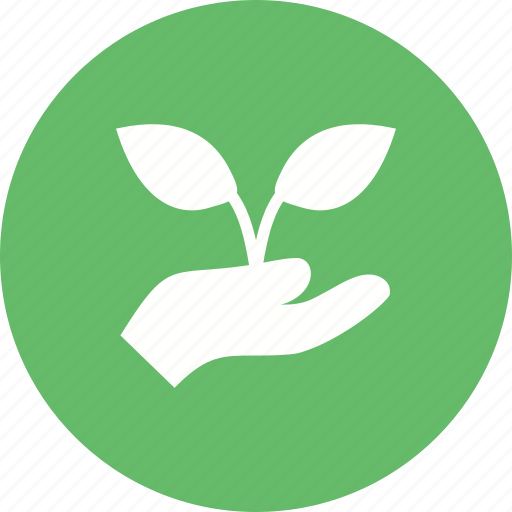 environment, green, growth, hand, holding, life, plant icon