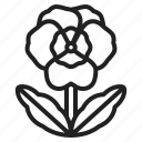 spring, springtime, seasons, flowers, easter, pansies, viola icon