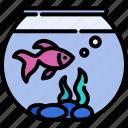 animal, beautiful, bowl, fishbowl, goldfish, pet, water