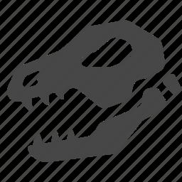 bone, dinosaur, fossil, prehistoric, primitive, skull, stone age icon