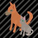 animal, cat, dog, isometric, object, pet, puppy