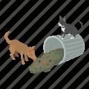 adopt, animal, cute, isometric, kitten, object, stray