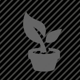 biology, ecology, education, nature, plant, school, subject icon