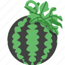 fruit, summer, vegetable, watermelon