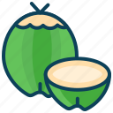 coconut, drink, food, fruit, summer, tendar coconut icon