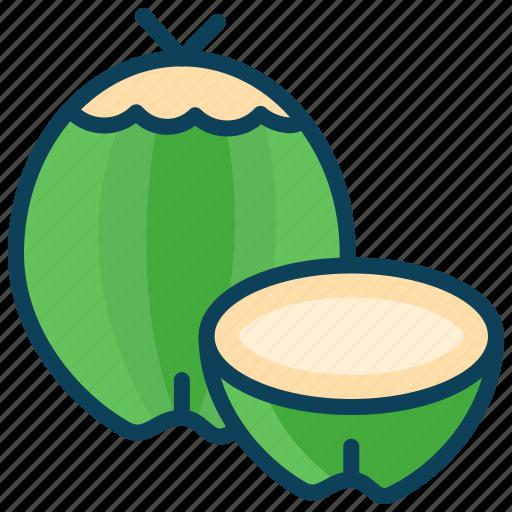 coconut, drink, food, fruit, summer, tendar coconut icon