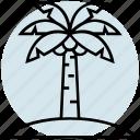 beach, island, palm, summer, tree