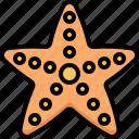 starfish, sea, fish, beach, holiday, vacation, summer