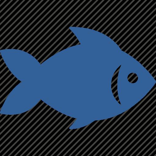animal, fish, fishing, food, sea, summer icon