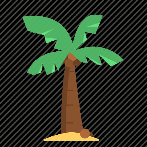 cconut tree, cocnut palm, coco palm, coconut, travel, tree icon