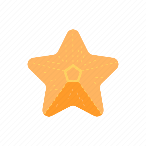 sea star, star, starfish, travel icon