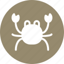 crab, food, meat, seafood icon