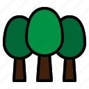 branch, forest, forestry, forrest, leaves, nature, trees icon