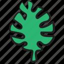 aquaculture, aquatic life, macroalgae, marine algae, seagrass, seaweed, underwater icon