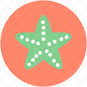 asteroidea, fish, sea animal, sea star, starfish icon