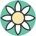 bloom, blossom, flower, gerbera, sunflower icon