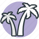 date trees, island, palm trees, coconut trees, palm, beach