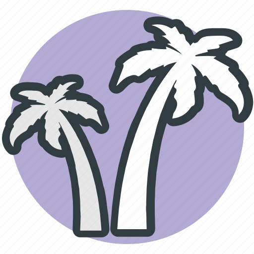 beach, coconut trees, date trees, island, palm, palm trees icon