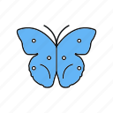 beautiful, butterfly, summer icon