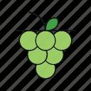 fruit, grape, wine icon